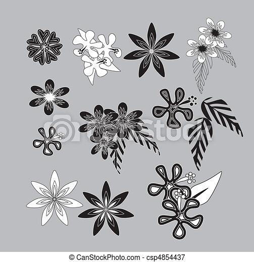 Hawaiian flowers - csp4854437