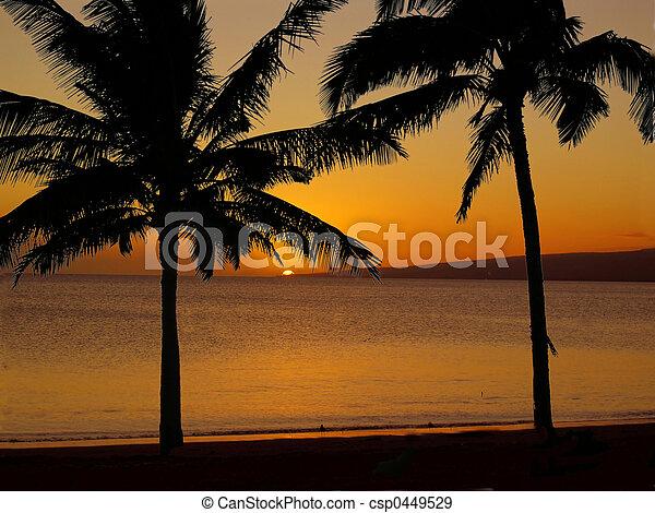 Hawaiian Sunset 2 - csp0449529