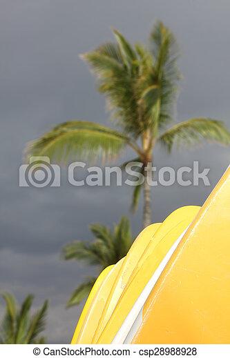 hawaiian surf boards - csp28988928