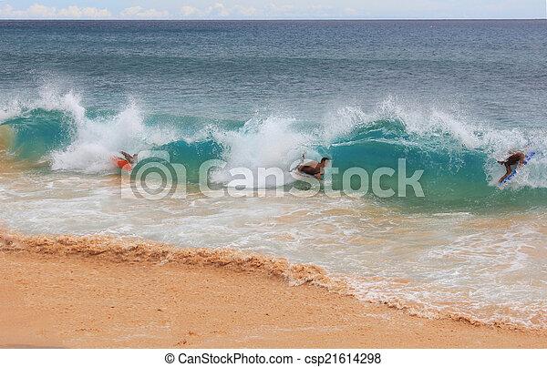 hawaiian surf - csp21614298