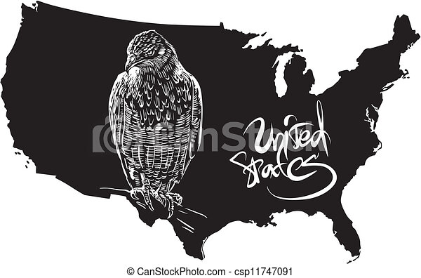 Hawk And US Outline Map Black And White Vector Eps Vectors - Us blank map