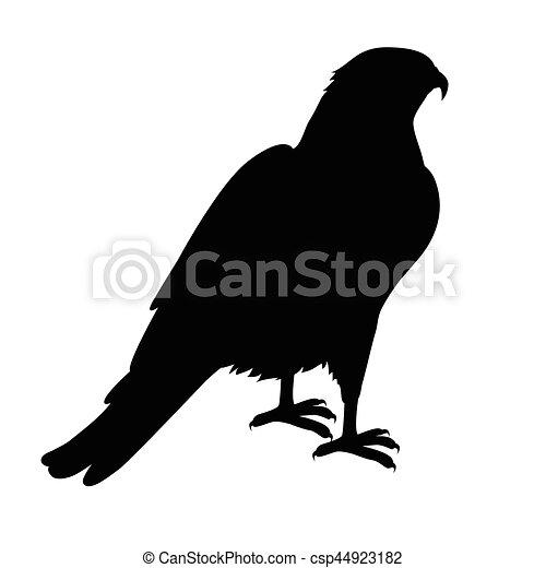 Hawk Flat Design Vector Illustration - csp44923182