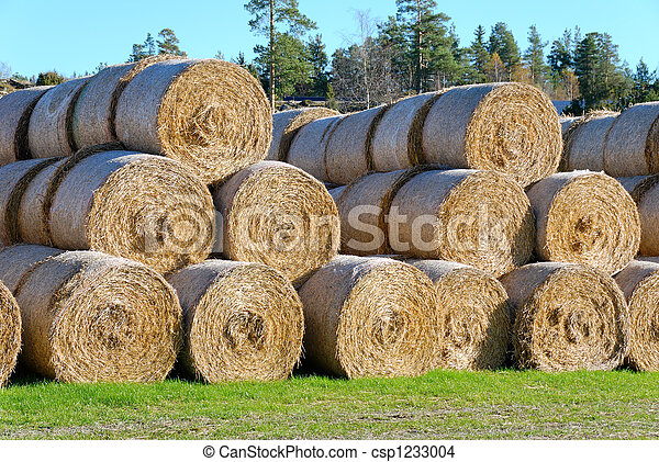Hay Bails from Side  - csp1233004