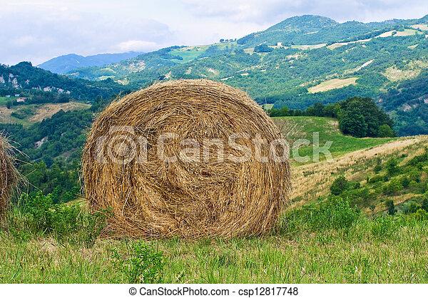 Hay bale field. - csp12817748
