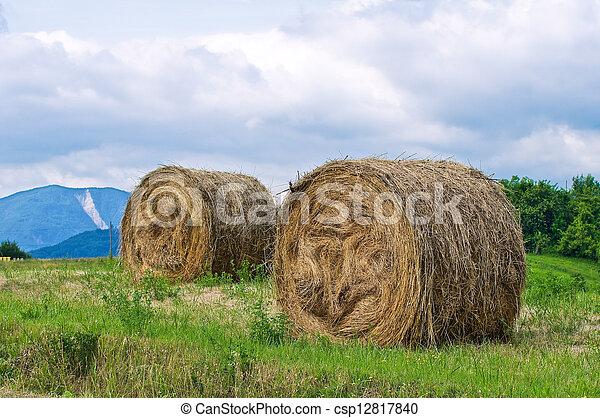 Hay bale field. - csp12817840