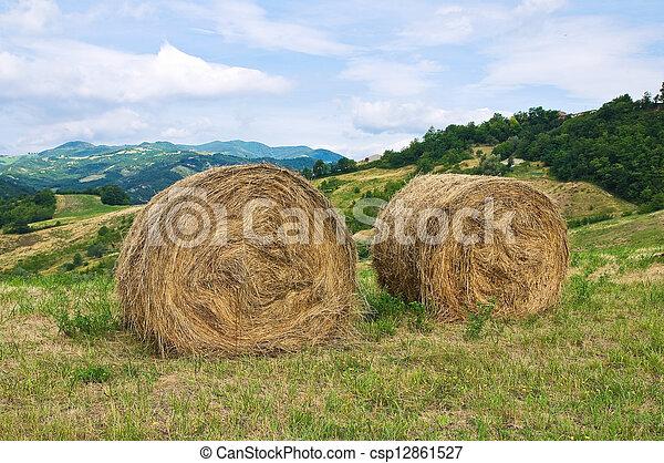 Hay bale field. - csp12861527