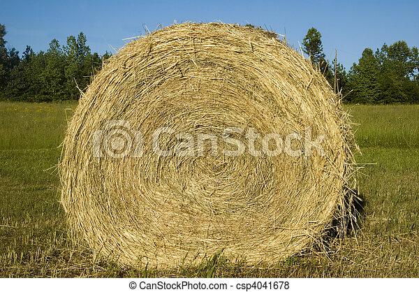 Hay Bale - csp4041678
