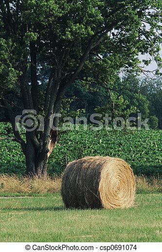 Hay Bale - csp0691074
