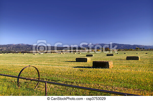 Hay bales in the field - csp3753029