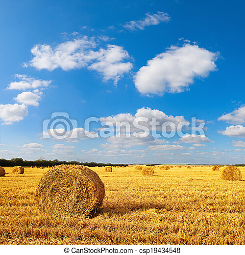 Hay bales sitting in a field - csp19434548