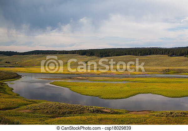 Hayden Valley - landscape of American Bison - csp18029839