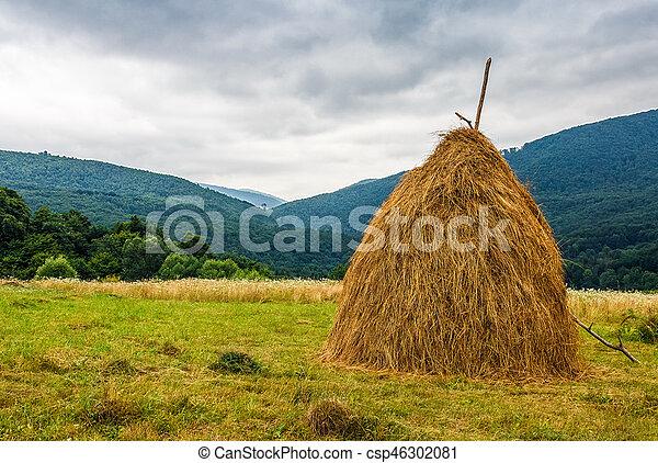 haystack near orchard on hillside - csp46302081