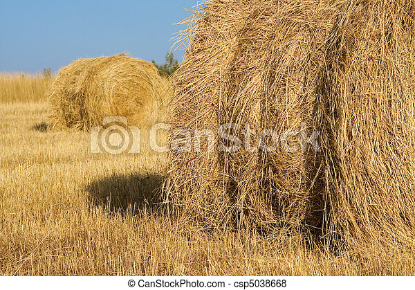 Haystacks in field - csp5038668