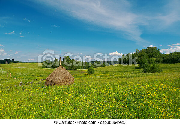 Haystacks on the summer meadow - csp38864925