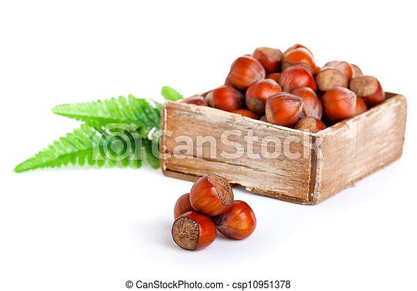 hazelnut in the wooden box. on white background - csp10951378