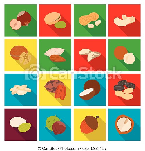 Hazelnut, pistachios, peanuts and other types of nuts.Different types of nuts set collection icons in flat style vector symbol stock illustration web. - csp48924157