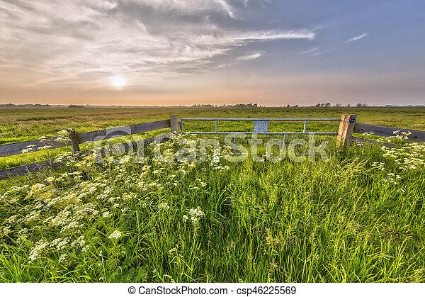 Hazy sunset over fence in dutch polder - csp46225569
