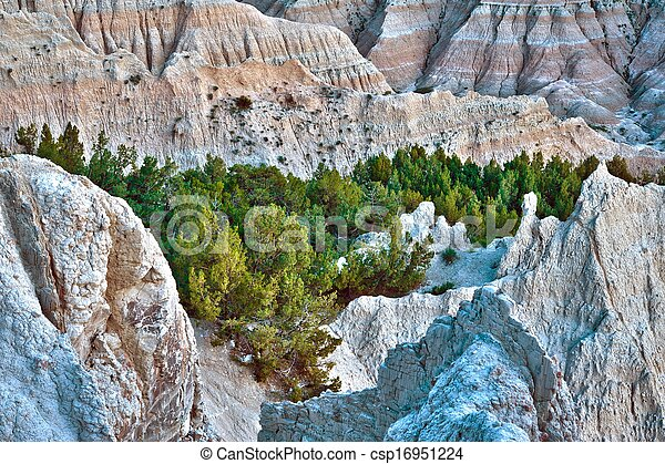 HDR Badlands Forest - csp16951224