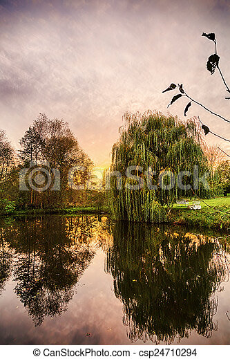 hdr shoot of a weeping willow mirroring in a pond - csp24710294