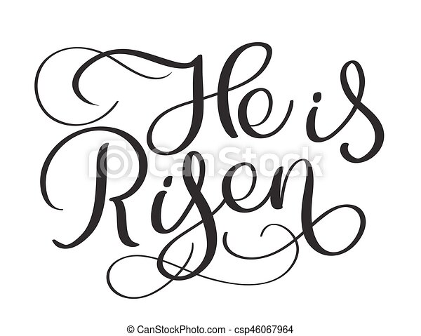 Perfect He Is Risen Text On White Background. Calligraphy Lettering Vector  Illustration Eps10.