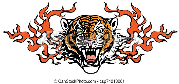 Head of Angry tiger in tongues of flame - csp74213281