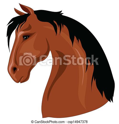 Head of brown horse - csp14947378