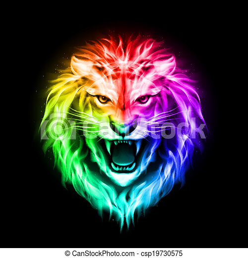 Head of colorful  fire lion - csp19730575