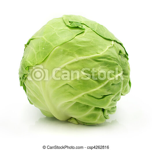 head of green cabbage vegetable isolated - csp4262816