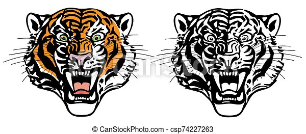 head of roaring tiger - csp74227263