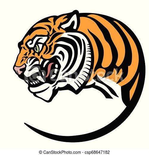 head of tiger - csp68647182