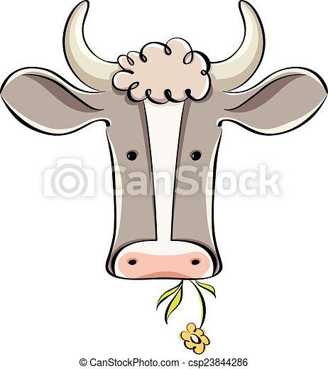 head., vaca - csp23844286