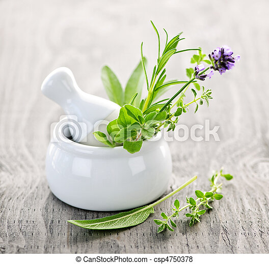 Healing herbs in mortar and pestle - csp4750378