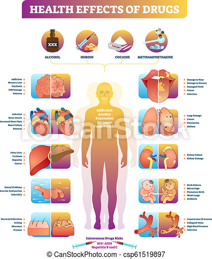 health effects of illegal drugs vector illustration diagram disease set health effects of illegal drugs vector illustration https www canstockphoto com health effects of illegal drugs vector 61519897 html