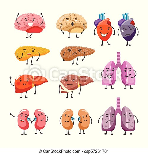 Healthy and thick organs with faces and limbs. internal body parts ...