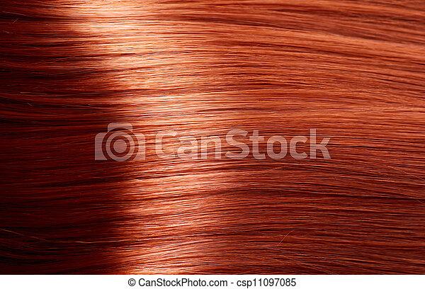 Healthy Brown Hair - csp11097085