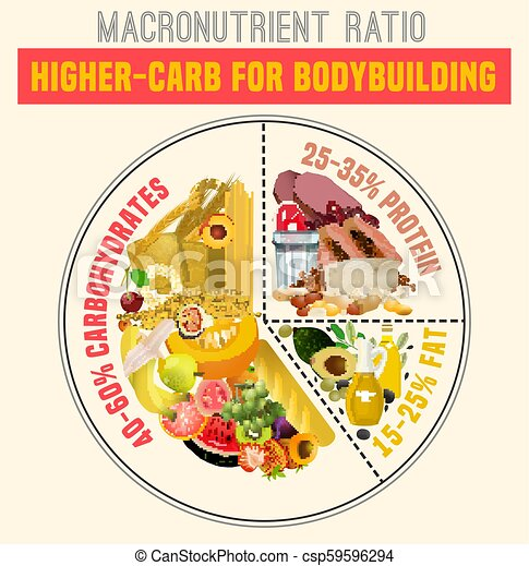 Healthy Eating Plate Higher Carbohydrate Diet Diagram Macronutrient Ratio Poster Bodybuilding Concept Colourful Vector