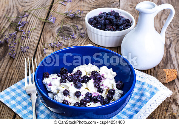 Healthy Food: Cottage Cheese With Frozen Blueberries   Csp44251400