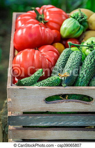 Healthy tomatoes and cucumbers in wooden box - csp39065807