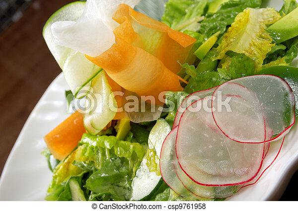 Healthy vegetable salad. - csp9761958
