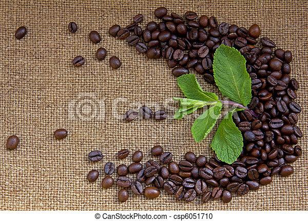 Heap of burnt brown arabica coffee beans - csp6051710