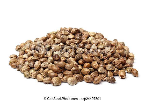 Heap of hemp seeds - csp24497591