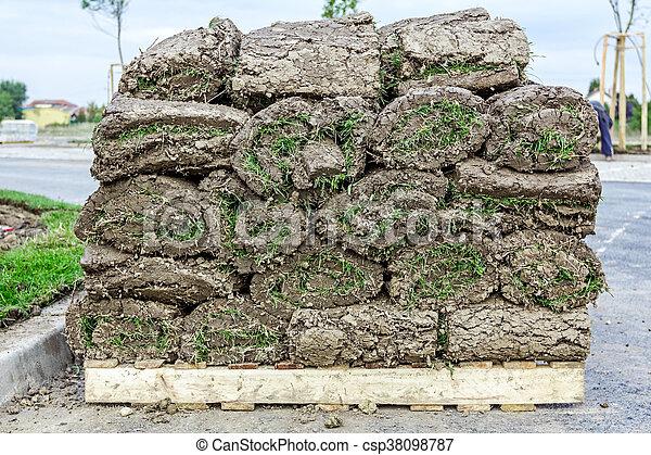 Heap of sod rolls for installing new lawn, unrolling grass