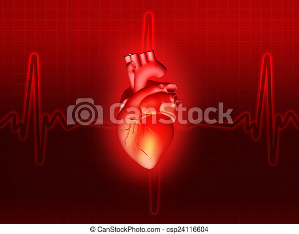 Heart disease 3d anatomy illustration red. Heart disease 3d anatomy ...