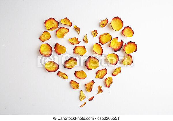 Heart - Herz - csp0205551