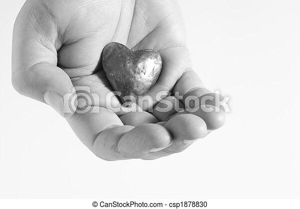 Heart In Hand - csp1878830