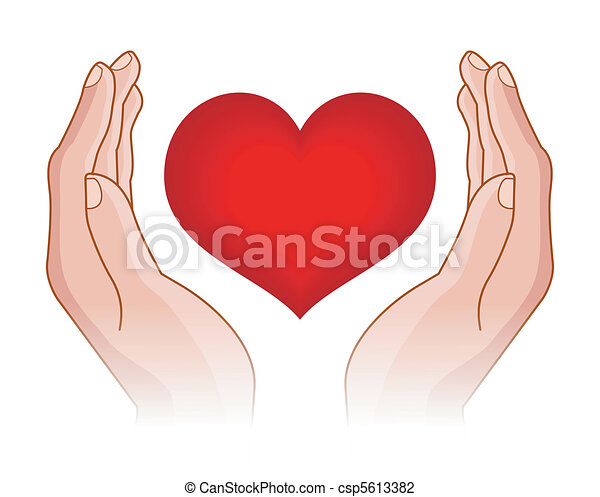 heart in hands - csp5613382