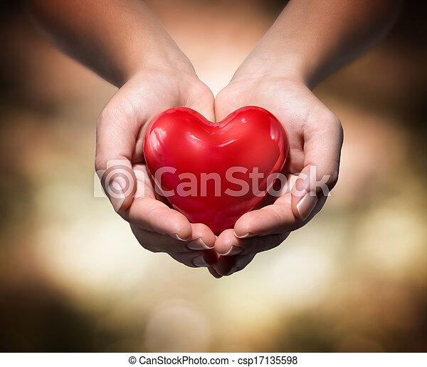 heart in heart hands - csp17135598