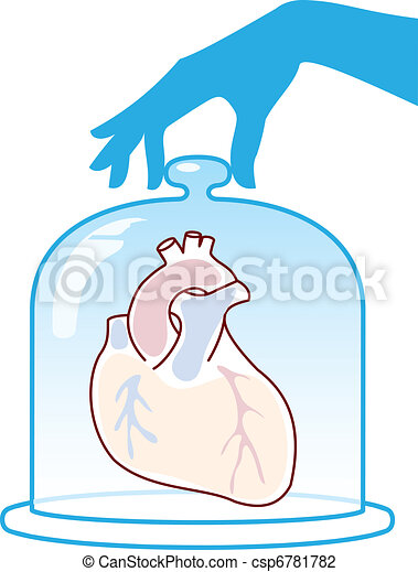 Heart is protected by a bell jar. - csp6781782