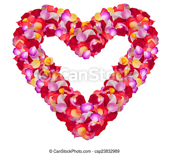 heart of roses on a white background - csp23832989