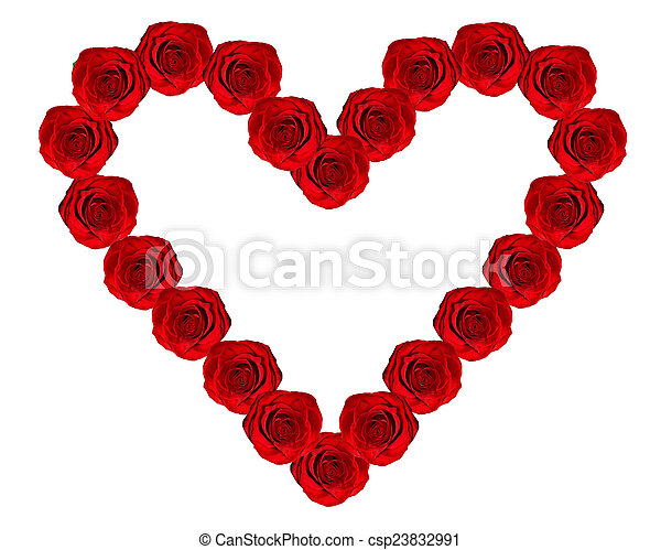 heart of roses on a white background - csp23832991